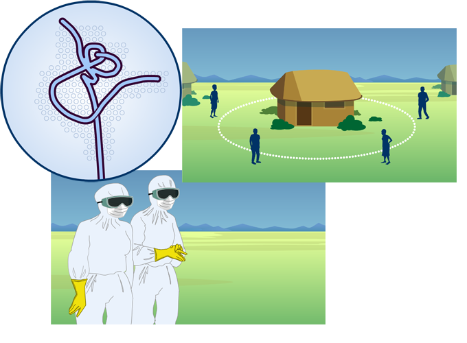 Ebola animation stills